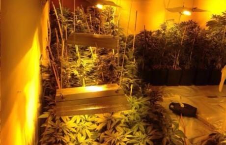 מעבדת סמים נחשפה בתוך קראוון במושב שדה אליעזר