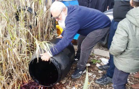 מאות ליטרים של יין נשפכו מיקב בצפת בטקס מיוחד