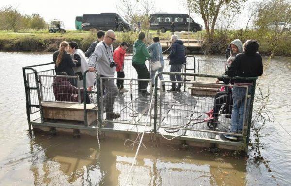 יום הנגישות הבינלאומי: מאות מבקרים עם מוגבלויות באגמון החולה