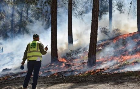 """נערכים לעונת השריפות בקק""""ל: שריפה מבוקרת נערכה ביער ביריה"""