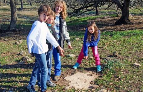 הילדים חשפו בטיול פסיפס עתיק – רשות העתיקות תעניק להם תעודות הוקרה