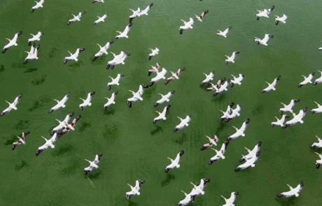תערוכה של הטייס והצלם אסף סולומון במצפה הימים
