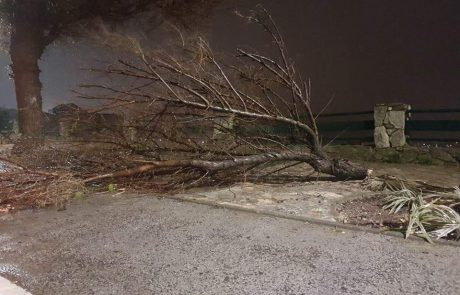 הסערה המסעירה: רוחות עזות – הצפות – הפסקות חשמל – שלג בחרמון