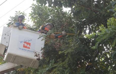 נערכים לסערה: חברת החשמל שינעה גנרטורים לאזור צפת והגולן
