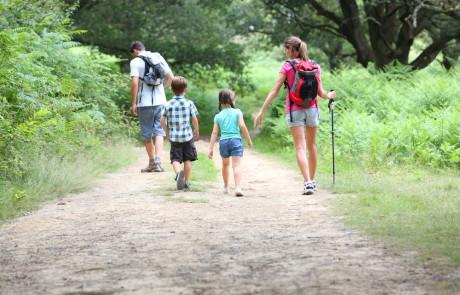 קחו מקל, קחו תרמיל – כך מתכוננים לטיול משפחתי בגליל